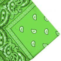 Lime Paisley Bandana